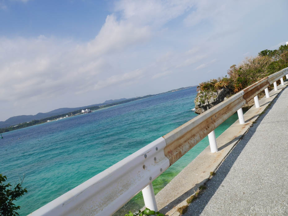 img_article-okinawa2018-17